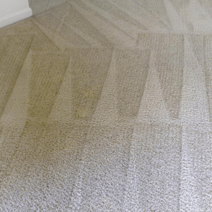 Carpet Cleaning East Malling
