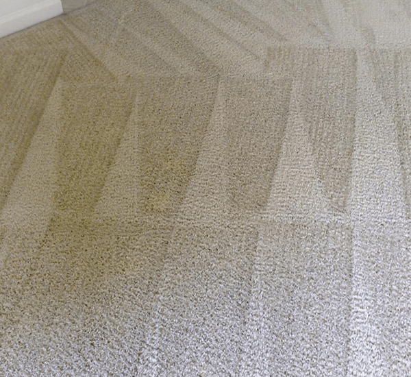 End of Tenancy Carpet Cleaning